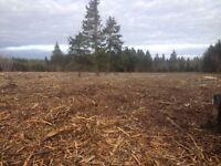 Excavation et débroussaillage forestier