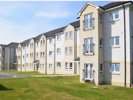 Very spacious modern 3 bedroom Apartment in Holm Farm Area
