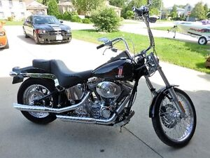 Brand New 2004 Harley Davidson Softail, highly modified