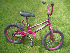 16 inch Purple Mountain Tour bike
