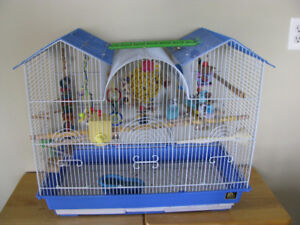 Beautiful pair of parakeets with cage