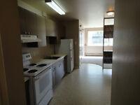 EAST HILL LARGE 3 BEDROOM SUITE IN 4 PLEX, $925 + POWER