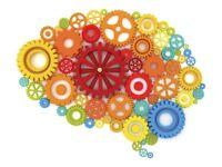 Social Sciences Tutor - Psychology, Sociology, Politics - KS3 Science