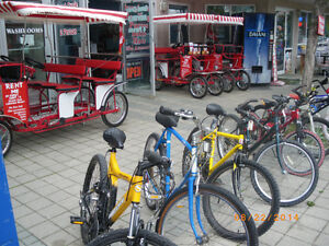 successful bicycle business, reduced price