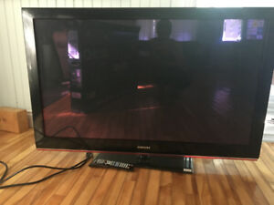 Samsung Plasma TV Needs Screen Repair