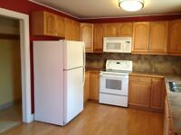 RENOVATED DUPLEX FOR RENT