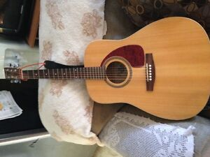 Norman acoustic/electric