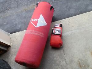 Boxing Bag and Gloves.