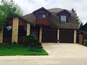 $900 All in, Lakeview, 1100sq' Newly Renod, Available Nov 1