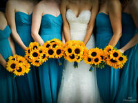 Wedding Photography by 808 Photography