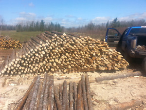 Black spruce fence posts and rails.