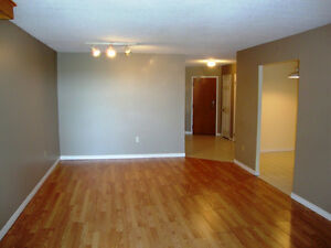 695 Richmond – Downtown Great 13th Floor  2 bed Apt. - May 1st