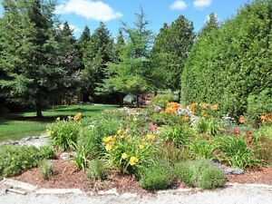 Waterfront lot in the Bruce Peninsula
