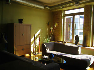 Sunny south facing downtown loft