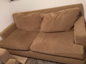Free Giant comfy sofa and love seat