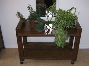 Sturdy (Metal Reinforced) Rolling cart/plant table/tv. stand