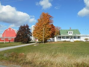 11 Acre Hobby farm - Upper Branch