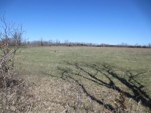 Building lot for sale in rural Belleville