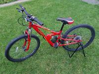 "Apollo FS24 teenager bike, 24"" wheels, red"