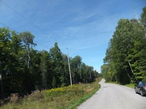 7.7 Acres Estate Property in Haliburton - $397 per Month