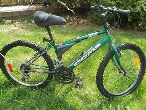 Ladies CCM ICE Bike