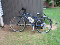 BionX 350 HT electric assist bicycle