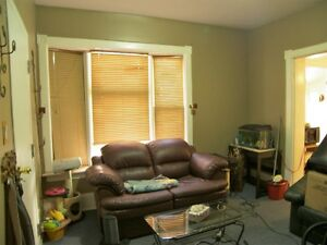 Affordable Downtown Apartment with Garden Kitchener / Waterloo Kitchener Area image 4