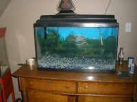 30 gallon Fish Tank, in St. Thomas