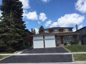 New 4 bedrooms basement separate entrance for rent hwy7& McCowan
