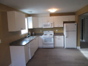 New 2 Bedroom Suite Off Howard and 8th Street