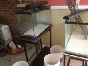 2 x 30 gal. Fish Tanks, stands, accessories - Need Gone