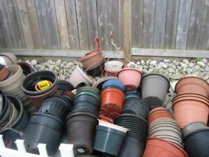 starter pots for indoor plus outdoor plant containers