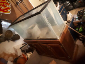 77 Gallon Fish tank BEST OFFER