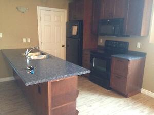 2 Bedroom Basement Suite in Stonebridge