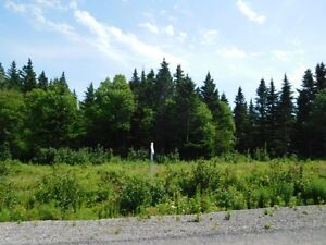 KENMORE TRAIL (Lot 10-1), WEST QUACO (WATER VIEW)