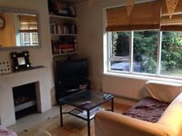 Brilliant Room for Professional Female (Viewings Sunday)