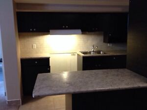 Kitchen cabinets for sale + white Oven+ Micowave
