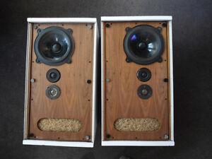Haut-Parleur B&W Bowers and Wilkins DM2 Speakers