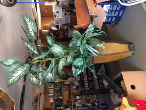 If reading this, still available.Artificial Silk potted plant