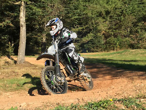 Factory Monster Energy green team edtion