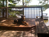Boat acess cottage for sale on mazinaw lake.