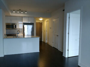 Brand new One Bedroom Condo on 16th floor for rent