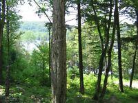 Terrain à vendre Outaouais Lac-des-plages accès lac-de-la-carpe