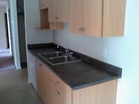 February Free, March Half Price! Beautiful Millwoods 1 Bedroom!