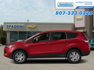 2014 Ford Escape SE   - Low Mileage