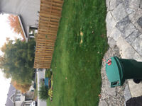 Need lawn mowed & trimmed ASAP!