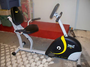 Everlast Recumbent Cycle With Magnetic Resistance paid