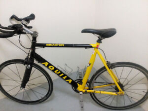Aquila time trial  triathlon bike size large