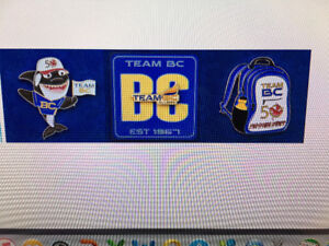 Wanted to Buy Team BC 2017 Canada Games Lapel Pins Winnipeg