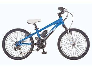 Stolen giant bike boys Mount Claremont Nedlands Area Preview